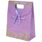 Mini Lovely Gift Paper Bag (Color Assorted)