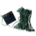 Solar Self-Recharge 60-LED Tree Light (White LEDs)