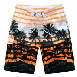 Mens Coconut Tree Print Striped Swim Shorts Short Pants Size M~6XL, Quick-Drying Summer Surf Board Loose Beach Shorts Sky Blue/XL