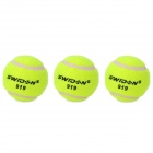 Sports Training Tennis Balls (3-Ball Set)