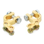 Copper Alloy Battery Terminal for Car (Pair)