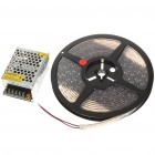 24W 630K Waterproof 300-SMD LED Red Light Flexible Strip with Power Switch (5-Meter/DC 12)