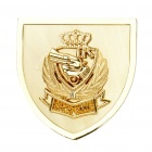 TR01 Decorative Car Zinc Alloy Badge Emblem Sticker - Gold