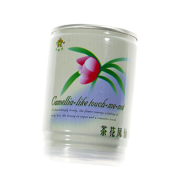 Grow-a-Plant Magic Flower Can (Camellia)
