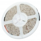 Waterproof 24W 1700LM 300x3528 SMD LED Red Light Flexible Strip w/ Power Adapter (5-Meter/DC 12V)