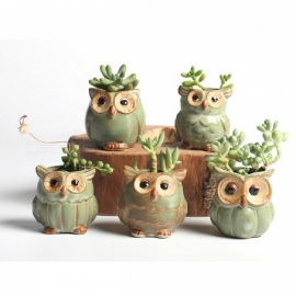 Mini Cartoon Owl Style Ceramic Flower Pot for Succulents Fleshy Plants Flowerpot Home Garden Office Decoration - 5PCS S