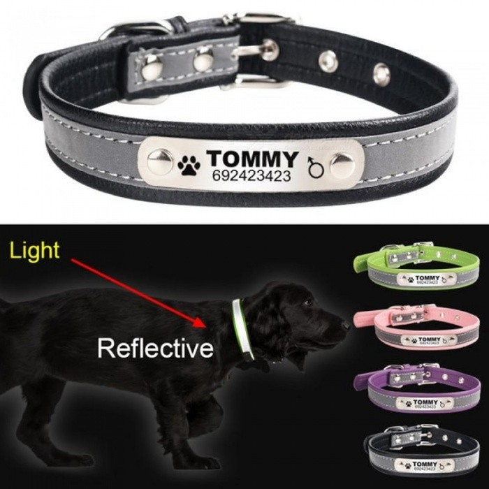 reflective leather personalized engraved dog collar custom puppy cat