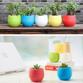 1 x Mini Round Plastic Meat Plant Flower Leakage Pot Garden Home Office Decor Micro Landscape Planter Yellow