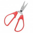 Stainless Steel Scissors - Red + Silver