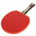 NINJA Sports Table Tennis Paddle