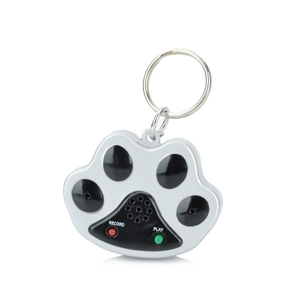 Pet Dog Safety Recorder Collar Tag - Black + Silver (2 x AG13)