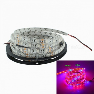 JRLED Waterproof 5050SMD 300-LED 36W Red and Blue Light Plant Growth Lamp (DC12V / 5m)