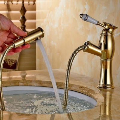 Contemporary Brass Ti-PVD Pull-out/­Pull-down Ceramic Valve Single Handle One-Hole , Bathroom Sink Faucet