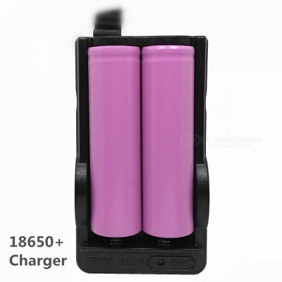 2 x 18650 Batteries + Double-Groove Charger Set for DV / Toy / Interphone / Instrument / Etc (US Plug)