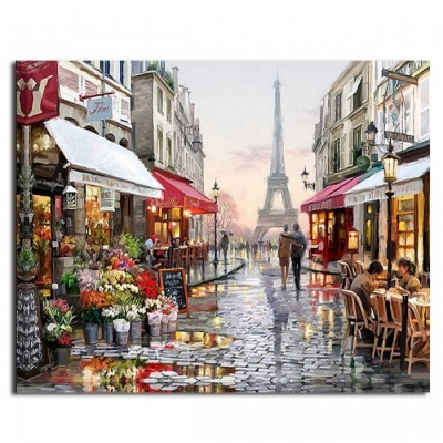 DRAWJOY GX4547 Unique Pictures DIY Painting By Numbers, Wall Art Handpainted Acrylic Paintings for Living Room Home Decoration frameless 40 50cm