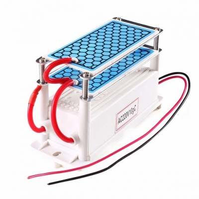 ATWFS Portable Ceramic Ozone Generator 10g Double Integrated Long Life Ceramic Plate Ozonizer Air Water Air Purifier 220V/110V 110V