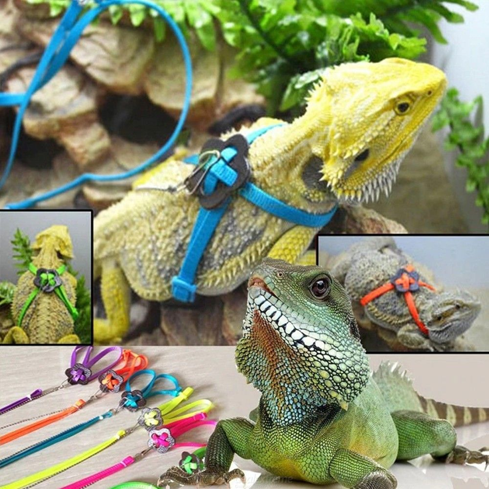 Reptile Lizard Harness Leash Polyester Adjustable Hauling Cable Rope Durable Small Pet Animal Collar Random Color