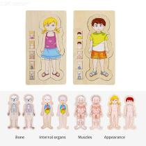 Educational-Wooden-Pegged-Puzzles-For-Toddler-Cartoon-Human-Body-Learning-Jigsaw