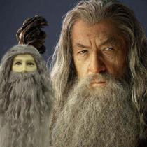 Albus-Dumbledore-Cosplay-Wig-And-Beard-Set-Harry-Potter-Character-Cosplay-Accessories