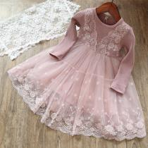 Childrens-Lace-Dress-Cute-Round-Neck-Long-Sleeve-Mesh-Dress