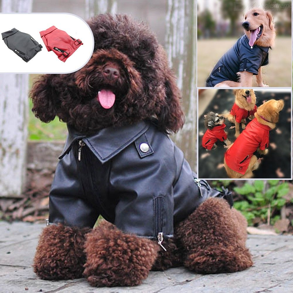 Autumn And Winter Puppy Two-Legged Leather Jacket Chihuahua French Bullfighting Teddy Pet Clothes