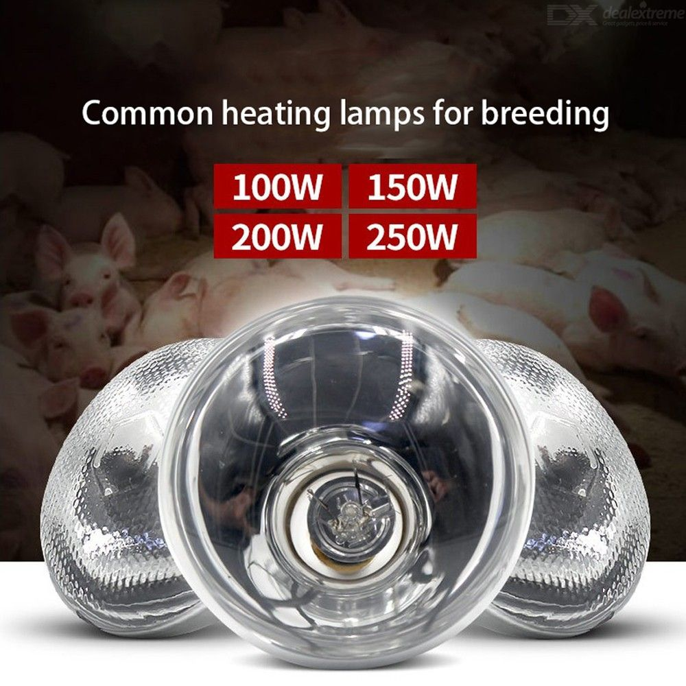 Poultry Adjustable Switch Heat Incubator Lamp Hen Pet Bulb Light Rearing For Chick Livestock Piggy Duckling