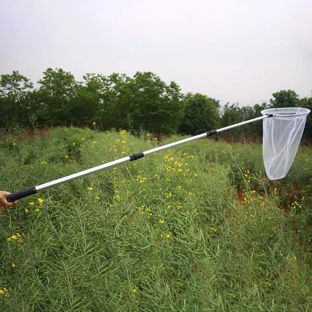 50cm Telescopic Handle Bug Butterfly Insect Net Professional Bug Insect / Butter?fly Folding Catching Net