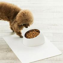 Original-Xiaomi-Stainless-Steel-Pet-Dog-Bowl-Tilted-Puppy-Cats-Food-Feeder-Pets-Non-skid-Feeding-Dishes