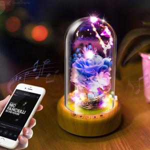 Creative Wishing Streamer Bottle Music Bluetooth Audio Speaker Everlasting Flower Atmosphere USB Decorative Night Light Lamp