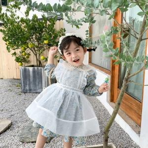 Flower Girls Long Sleeve Dual Layer Lace Princess Dress