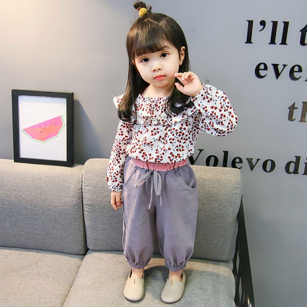 Toddler Baby Girls 2-Piece Outfit Floral Long Sleeve Blouse And Casual Pants, Two Pieces Clothes Set For Spring Autumn