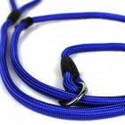 Nylon Pet Dog Training Traktion Seil Leine - blau (140cm)