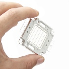 50W 2000lm 50-LED Blue Light Module - Silver (10 Series and 5 in Parallel / 32~34V)