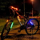 Silicone 30LM 2-LED 3-Mode Red Light Bike Light - Red (3 * AG13)
