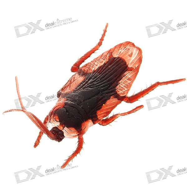 Buy Cockroach Shaped Fridge Magnet with Litecoins with Free Shipping on Gipsybee.com