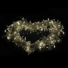 6W Warm White Decoration Waterproof 100-LED String Light (9.2m)
