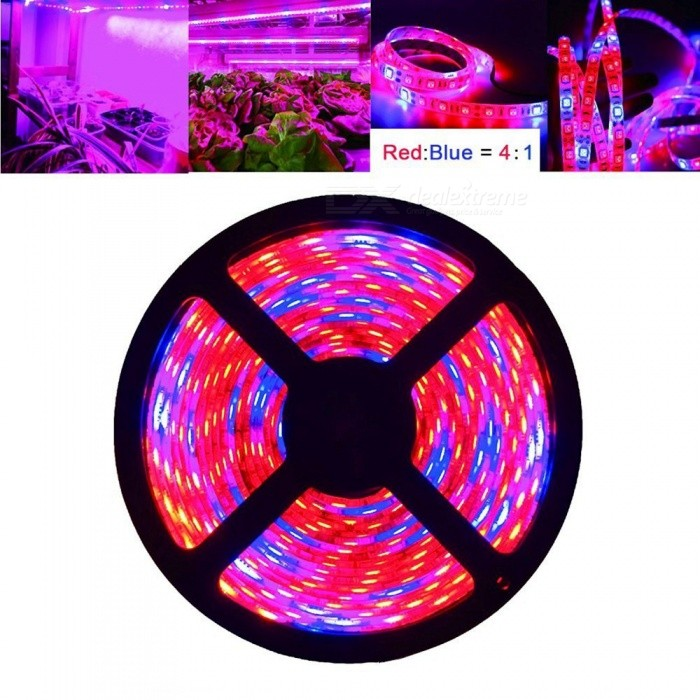 ZHAOYAO Waterproof 60W Plant Growth Lamp Strip with US Power Adapter5050 SMD Strips<br>Form  ColorBlack + Grey (US Plug)Color BINRed And BlueModel5050-300L-USMaterialCircuit boardQuantity1 DX.PCM.Model.AttributeModel.UnitPowerOthers,60WRated VoltageDC 12 DX.PCM.Model.AttributeModel.UnitEmitter Type5050 SMD LEDTotal Emitters300WavelengthRed 625-660nm; Blue: 450-465nmTheoretical Lumens4800 DX.PCM.Model.AttributeModel.UnitActual Lumens16-4000 DX.PCM.Model.AttributeModel.UnitPower AdapterUS PlugPacking List1 x LED plants growing strip light1 x DC connector 1 x Power Adapter<br>
