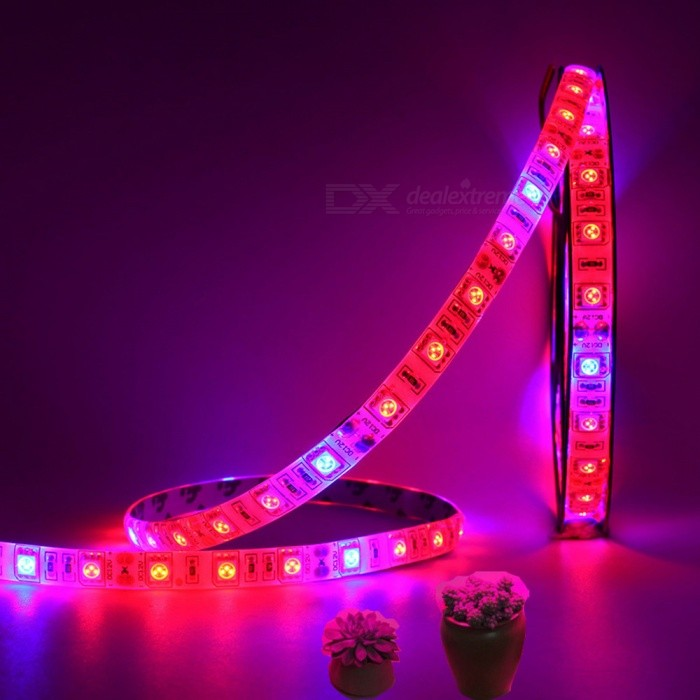 5m 60W 300-5050 SMD LED Plant Growing Full Spectrum LED Strip Light, 12V, 5 Red + 1 Blue Light, Non-Waterproof