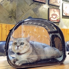 Fashion-Cats-Pets-Backpack-Universal-Transparent-Breathable-Folding-Traveling-Package-Carrier-Bags