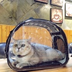 Fashion-Cats-Pets-Backpack-Universal-Transparent-Breathable-Folding-Traveling-Package-Carrier-Bags-Blue