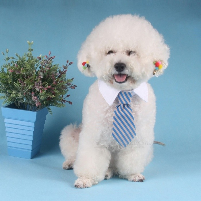 Cartoon Twill Tie For Pet Dog, Adjustable Velcro Cotton Tie With Collar For Dog Decoration Pet Supplies
