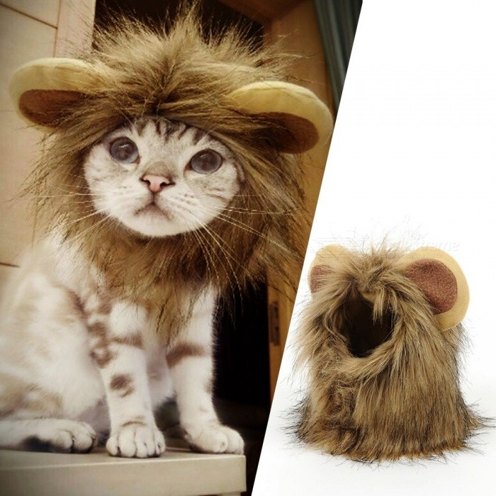 Funny Small Dog Cat Cosplay Lion Wig Head Cap Hat With Ear For Puppy Cats, Autumn Winter Dress Up Costume Muffler Scarf Gold/S