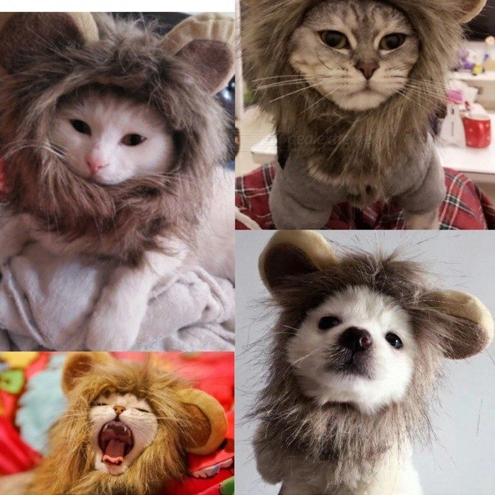 333065f1a ... Funny Small Dog Cat Cosplay Lion Wig Head Cap Hat With Ear For Puppy  Cats,