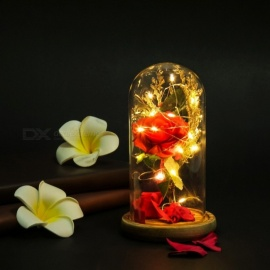 Romantic Micro Landscape LED Nightlight, Creative Rose LED Decorative Light For Home And Hotel Red/M