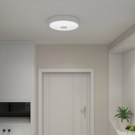 Yeelight Mini Meteorite Induction Ceiling Light Cold White