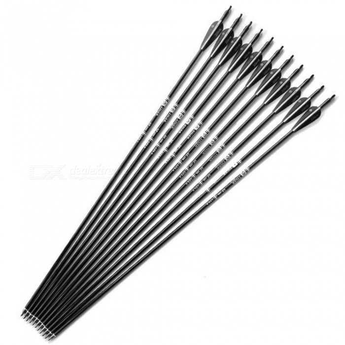 12-PCS-30-Inches-Fiberglass-Hunting-Arrows-Archery-Spine-500-With-Black-White-Feather-For-Compound-Bow-and-Recurve-Bow-Arrow-Spo-12pcs