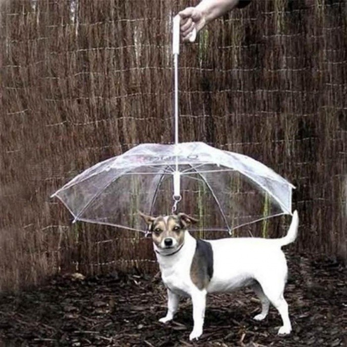 Pet Umbrella  Cute Waterproof Transparent Dog Puppy Pet Umbrella For Outdoor Rain Travel Hiking 27CM Length Transparent